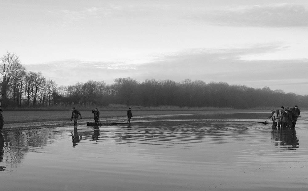 Pêche d'étang